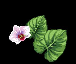Flor y hojas
